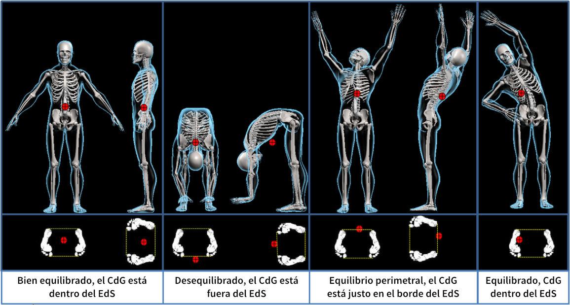 Neuropercusión en el equilibrio corporal